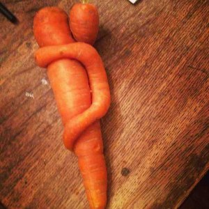 Baby Carrot with Mother