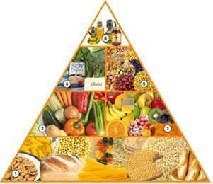 piramide-nutricional-vegetariana3